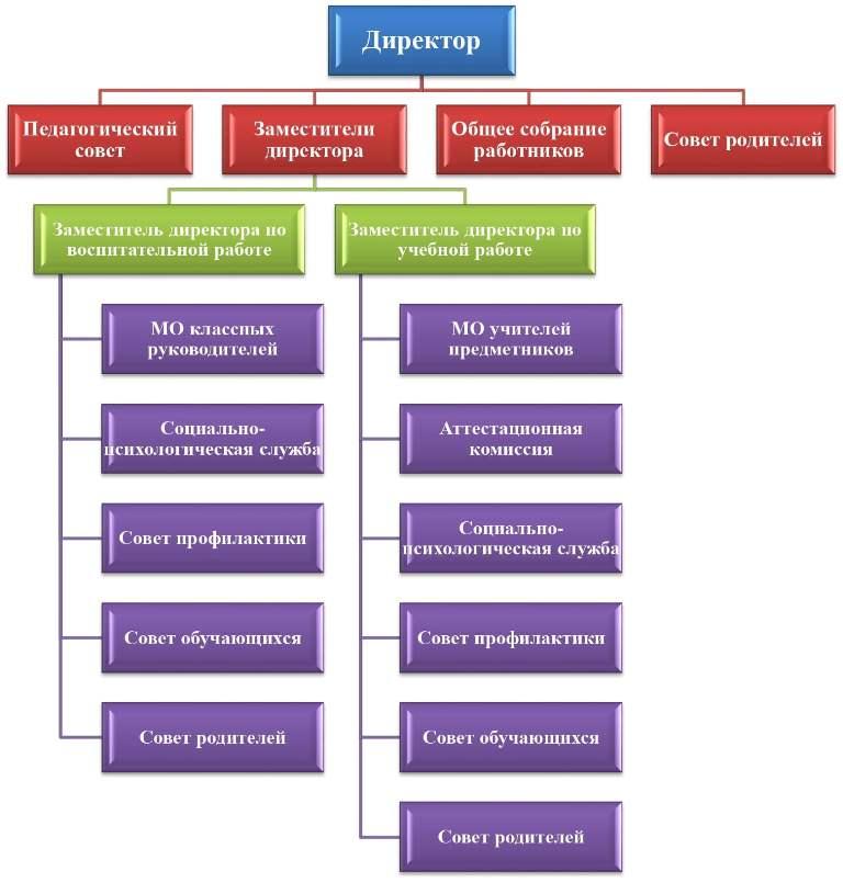 Структура и органы управления образовательной организации